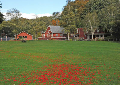 The Meadow is adjacent to our Picnic Shelter (left), Dining Hall (center), and Founders Lodge (right).