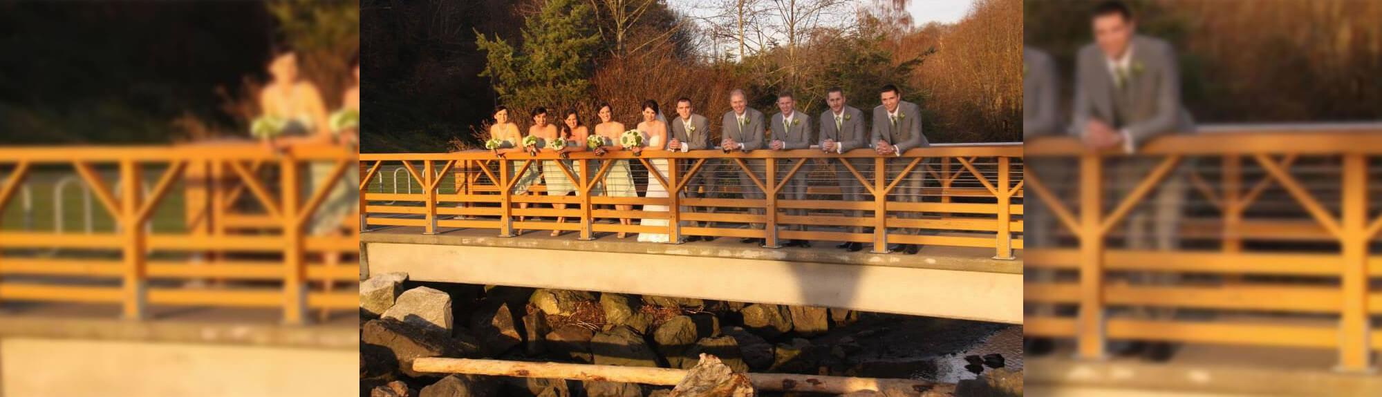 Wedding Party on Bridge Stream